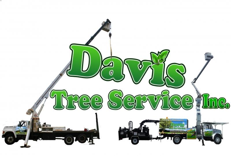 Tree Logo - Davis Tree