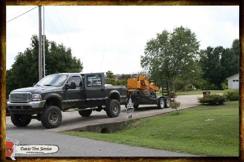boarder-with-logs-pics-447