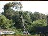 davis-tree-tn-80-wood
