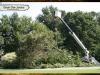 davis-tree-tn-92-wood