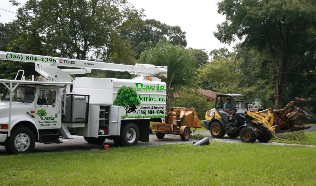 We Are A Best Emergency Tree Service You Could Call Have Proper Equipment For All Jobs
