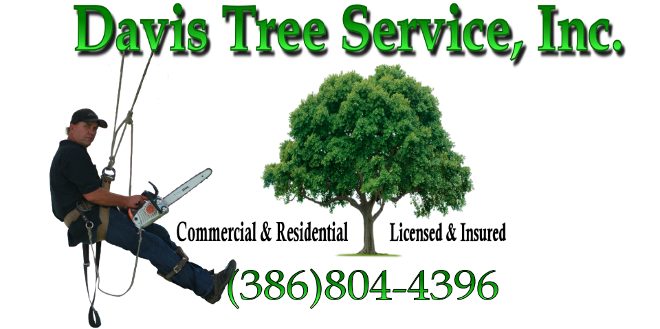 cropped-Tree-Logo-Davis.png